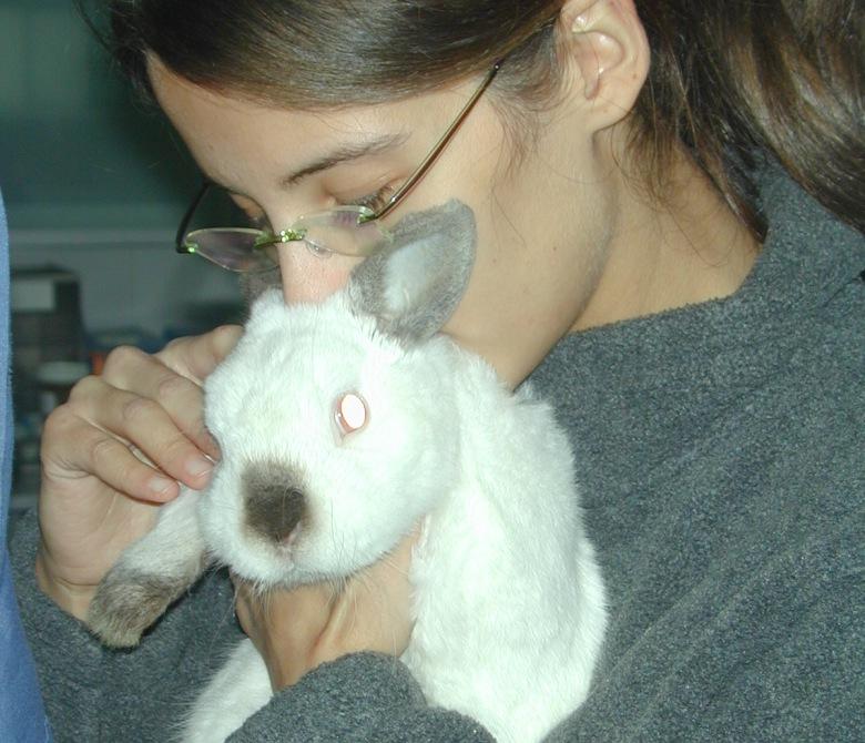 guardería_residencia_de_vacaciones_animales_exóticos